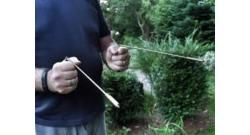 pendulum-dowsing