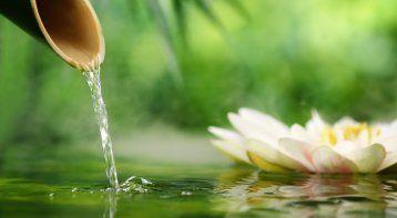 Pranic Healer Event Level I