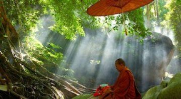 Compassion is true friend of detachment