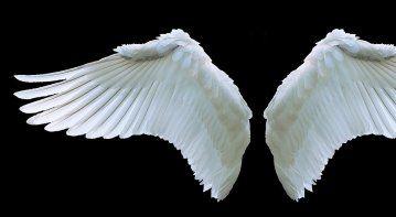 angel card decks