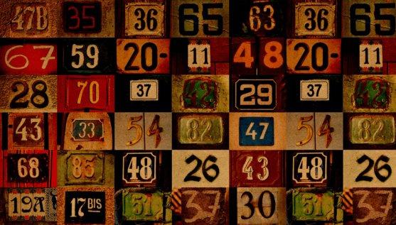 best numerology expert