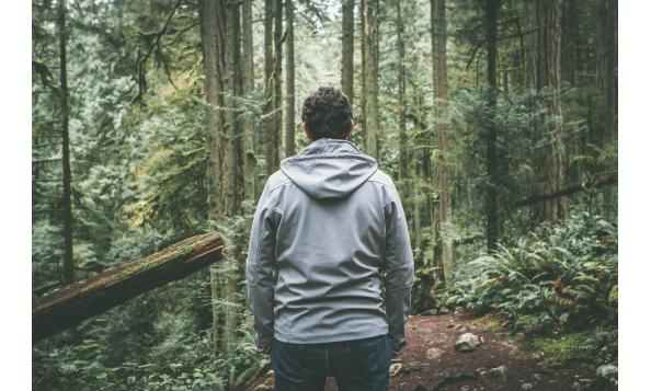 Forest Bathing: a Walk with Yourself, a Date with Nature